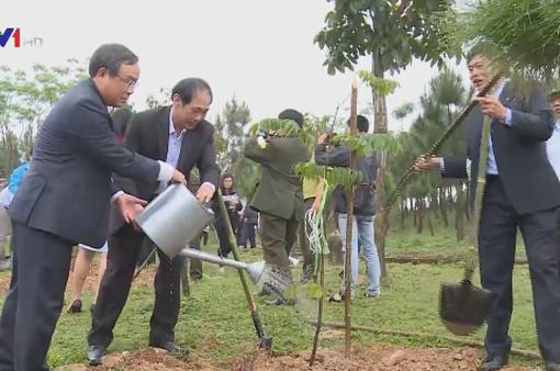 TT-Huế phát động Tết trồng cây đời đời nhớ ơn bác Hồ