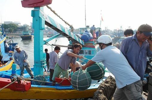 """Ngư dân Bình Thuận săn """"lộc biển"""" đầu năm"""