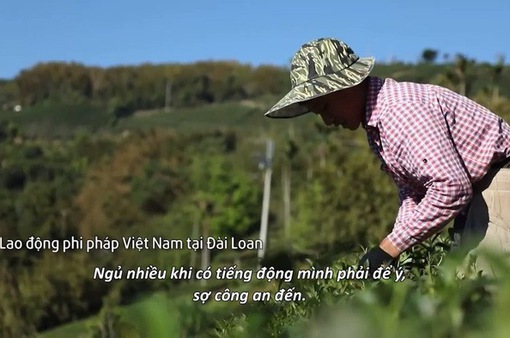 VTV Đặc biệt - Miền đất hứa: Khán giả đẫm nước mắt trước phận làm chui của lao động bất hợp pháp Việt ở xứ Đài