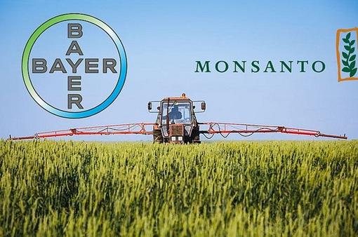 EU bật đèn xanh cho thương vụ Bayer-Monsanto