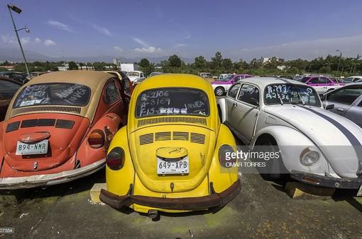 Diễu hành xe Volkswagen cổ trên đường phố tại Jordan