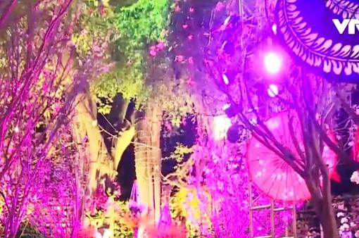 Hấp dẫn Lễ hội giao lưu văn hóa Nhật Bản 2018 tại Hà Nội