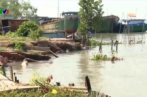 Sạt lở đe dọa cuộc sống hàng chục hộ dân dọc bờ sông Hậu, Vĩnh Long