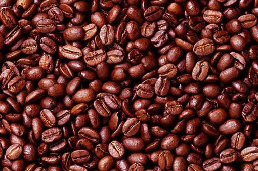 Cà phê Việt Nam đã chinh phục thế giới như thế nào?