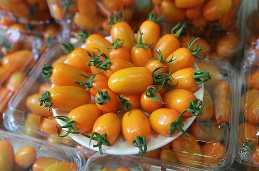 Cà chua ngọt - Trái cây ưa thích của nhiều gia đình