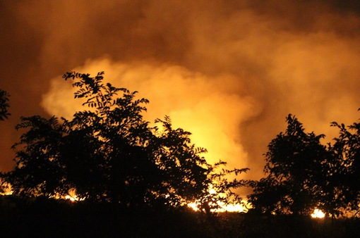 Rừng tràm ở huyện Bình Chánh bốc cháy ngùn ngụt trong đêm