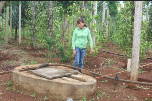 Đăk Lăk: Điều tra vụ nghi vấn đổ thuốc sâu xuống giếng nước của dân