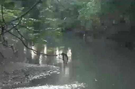 Bất thường cơ sở xả thải sông La Ngà