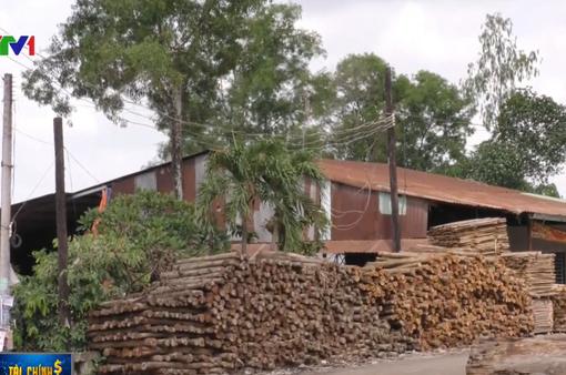 Đồng Nai: Biến gần 30ha đất rừng thành nhà xưởng