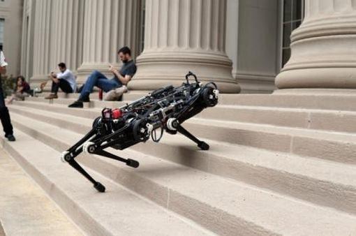 """Robot """"mù"""" vượt chướng ngại vật"""