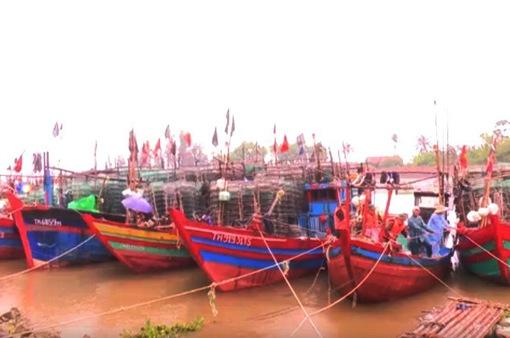 Thanh Hóa: Hơn 7.400 tàu thuyền được đưa vào nơi tránh trú bão an toàn