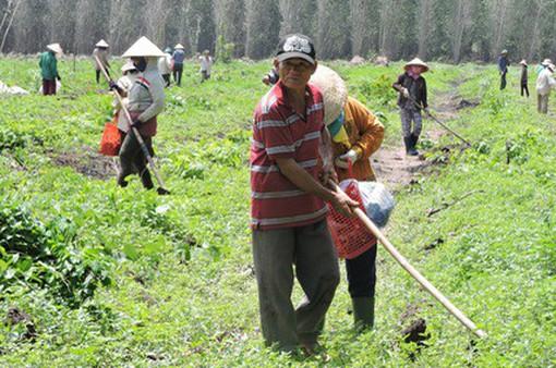 Bà Rịa - Vũng Tàu: Xử lý khiếu kiện đất đai theo hướng có lợi cho dân