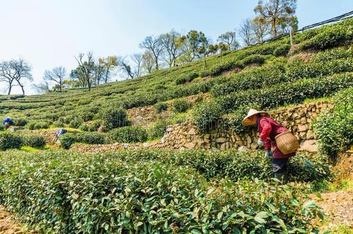 Trung Quốc nỗ lực kéo lao động về các vùng quê