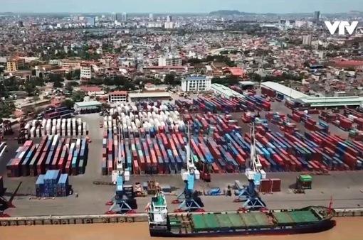 Giải phóng các lô thủy sản nhập khẩu bị nghẽn tại cảng do thiếu giấy kiểm dịch