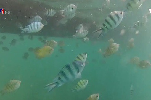 Công viên biển đầu tiên tại Campuchia