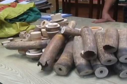 Thu giữ gần 200 kg ngà voi tại huyện Thường Tín (Hà Nội)