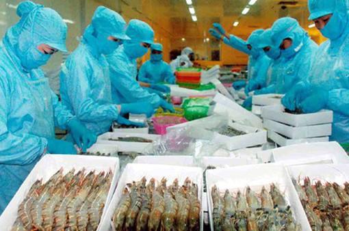 Mỹ áp thuế chống bán phá giá đối với tôm Việt Nam thấp hơn 5 lần so với dự kiến