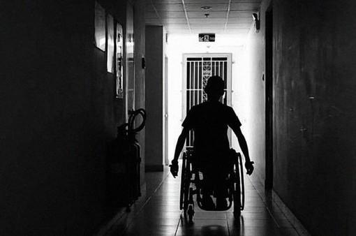"""""""Lân xe lăn""""- nhiếp ảnh gia quái dị được nghệ sĩ Thành Lộc ca ngợi"""