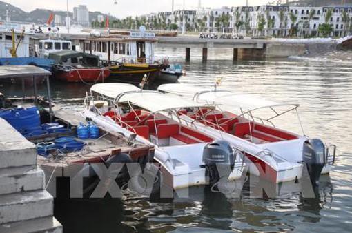 Cấm thuyền trưởng tàu du lịch hoạt động trên vịnh Hạ Long vì thu phí cao khách nước ngoài