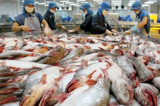 Việt Nam yêu cầu Mỹ xem xét lại cách xác định thuế với cá tra, basa