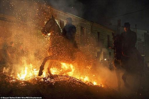 Lễ hội thử thách những chú ngựa ở Tây Ban Nha