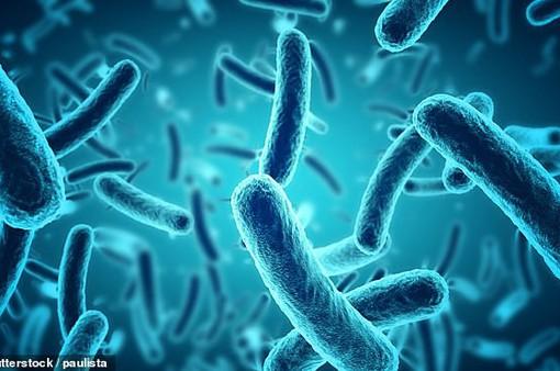 Phát hiện 2 chủng vi khuẩn kháng thuốc kháng sinh mới trong máu của bệnh nhân Trung Quốc