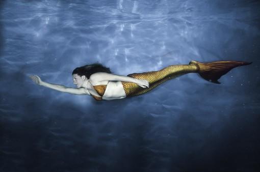 Hóa thân thành tiên cá - Không còn là câu chuyện trong mơ
