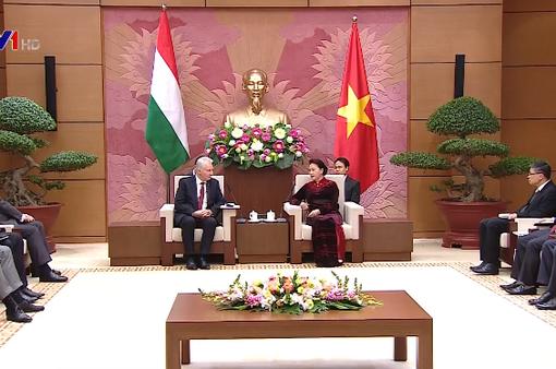 Tăng cường hợp tác Việt Nam - Hungary