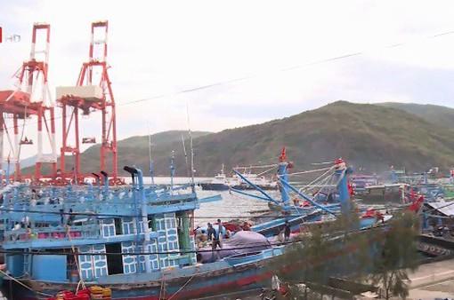 Công ty cổ phần cảng Quy Nhơn thu phí lai dắt tàu vượt khung