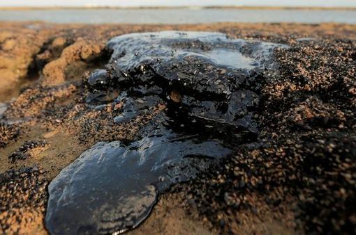 Brazil xác định nguồn gốc dầu loang gây ô nhiễm