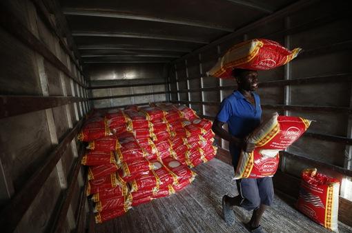 FAO kêu gọi giảm lượng lương thực lãng phí mỗi năm