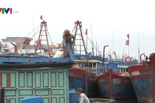 Ngư dân Quảng Ngãi nơm nớp nỗi lo mất an toàn neo đậu tàu cá