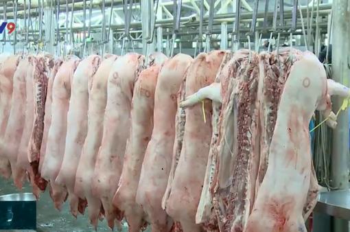 Cam kết không để tình trạng khan thịt lợn, sốt giá xảy ra ở TP.HCM