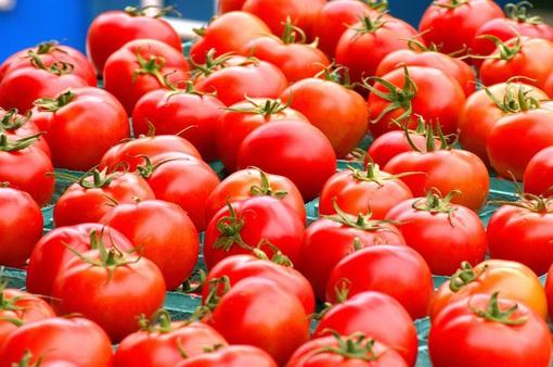 Chăm sóc da mùa Đông với 10 thực phẩm quen thuộc