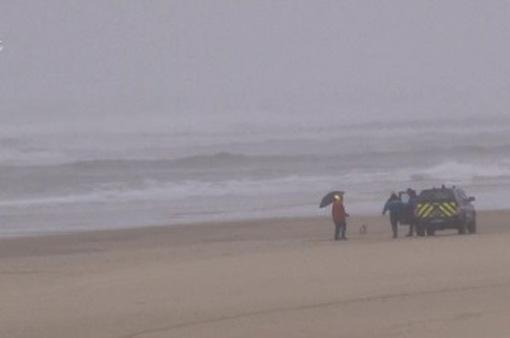 """""""Thợ săn vận may"""" đổ đến bãi biển ở Pháp lùng cocain"""