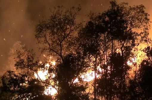 Cháy rừng trong nhiều giờ tại Điện Biên, nhiều người phải sơ tán
