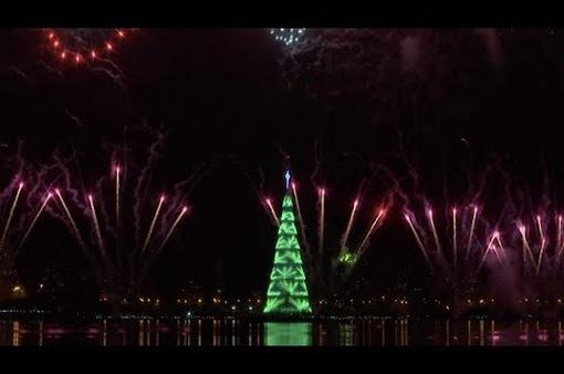 Thắp sáng cây thông Noel khổng lồ ở Brazil
