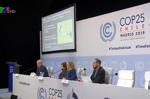 COP25 kết thúc tuần đàm phán đầu tiên