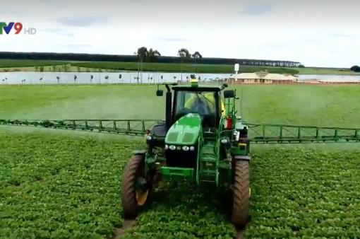 Sử dụng thuốc BVTV an toàn, hiệu quả hướng đến phát triển nông nghiệp bền vững