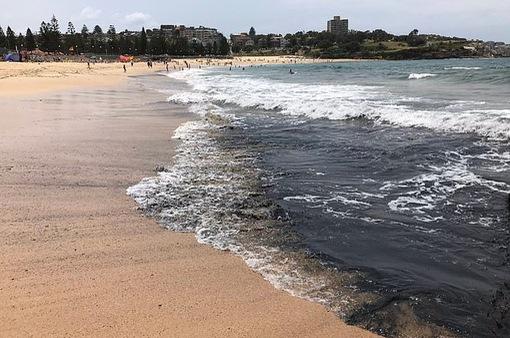 Biển Australia biến màu đen do thảm hoạ cháy rừng