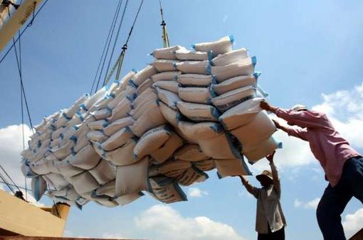 Thủ tướng: Sẽ thu mua khoảng nửa triệu tấn gạo trong thời gian tới