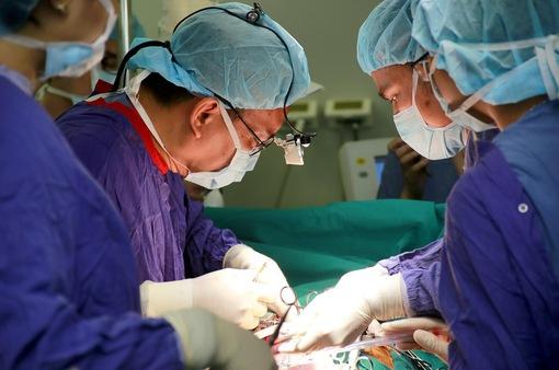 Hơn 20.000 người đã đăng ký hiến mô tạng sau khi qua đời