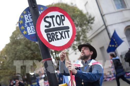 Hàng trăm người tuần hành phản đối Anh rời khỏi EU