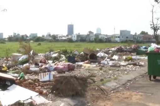 Ô nhiễm môi trường từ các khu đất bỏ hoang tại Đà Nẵng
