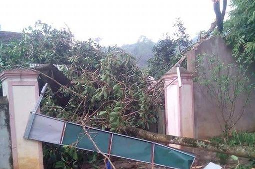 250 nhà bị tốc mái do lốc xoáy ở Nghệ An