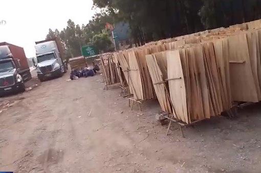 Thực hư năng lực sản xuất của doanh nghiệp gỗ ép xuất khẩu