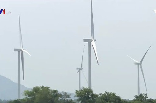 Ninh Thuận có nhiều lợi thế phát triển nguồn năng lượng tái tạo