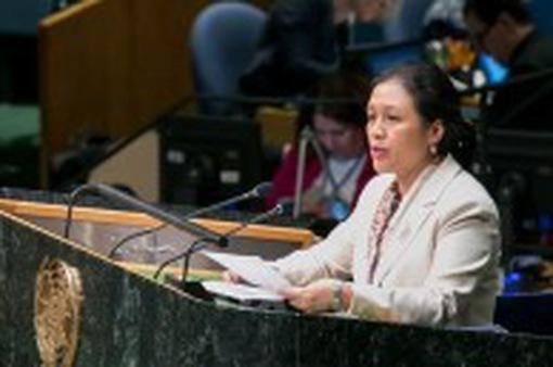 Khai mạc Hội nghị quốc gia thành viên Công ước Luật Biển lần thứ 29