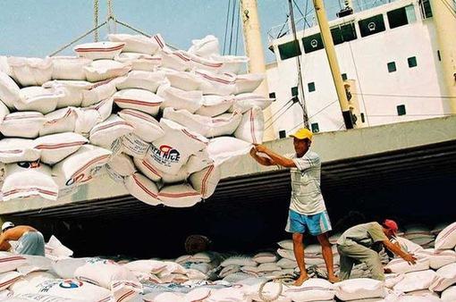Xuất khẩu gạo sụt giảm trong những tháng đầu năm 2019