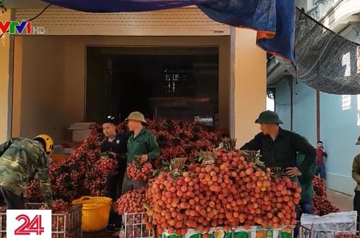 Tái diễn việc lùi cân vô lý trong thu mua vải thiều ở Lục Ngạn (Bắc Giang)